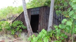 Polynésie 4 116