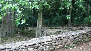 Polynésie 6 147