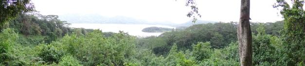 Polynésie 8 205