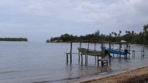 Polynésie 8 221