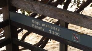 Australie 2 293