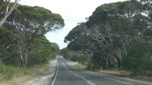 Australie 4 061