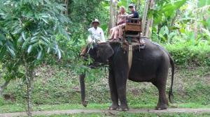 Bali 1 209