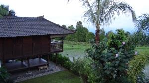 Bali 2 164
