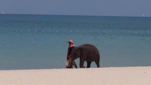 Thailande 1 021