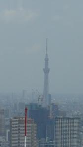 Japon 1 104