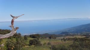 Réunion 3 004