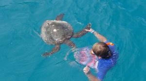 Seychelles 3 164