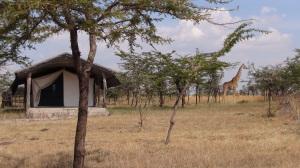 Kenya 4 003