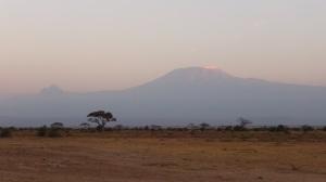 Kenya 6 132